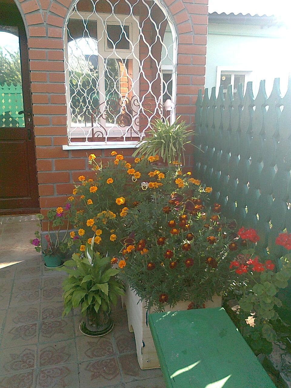 У моего дома. с.Корневое