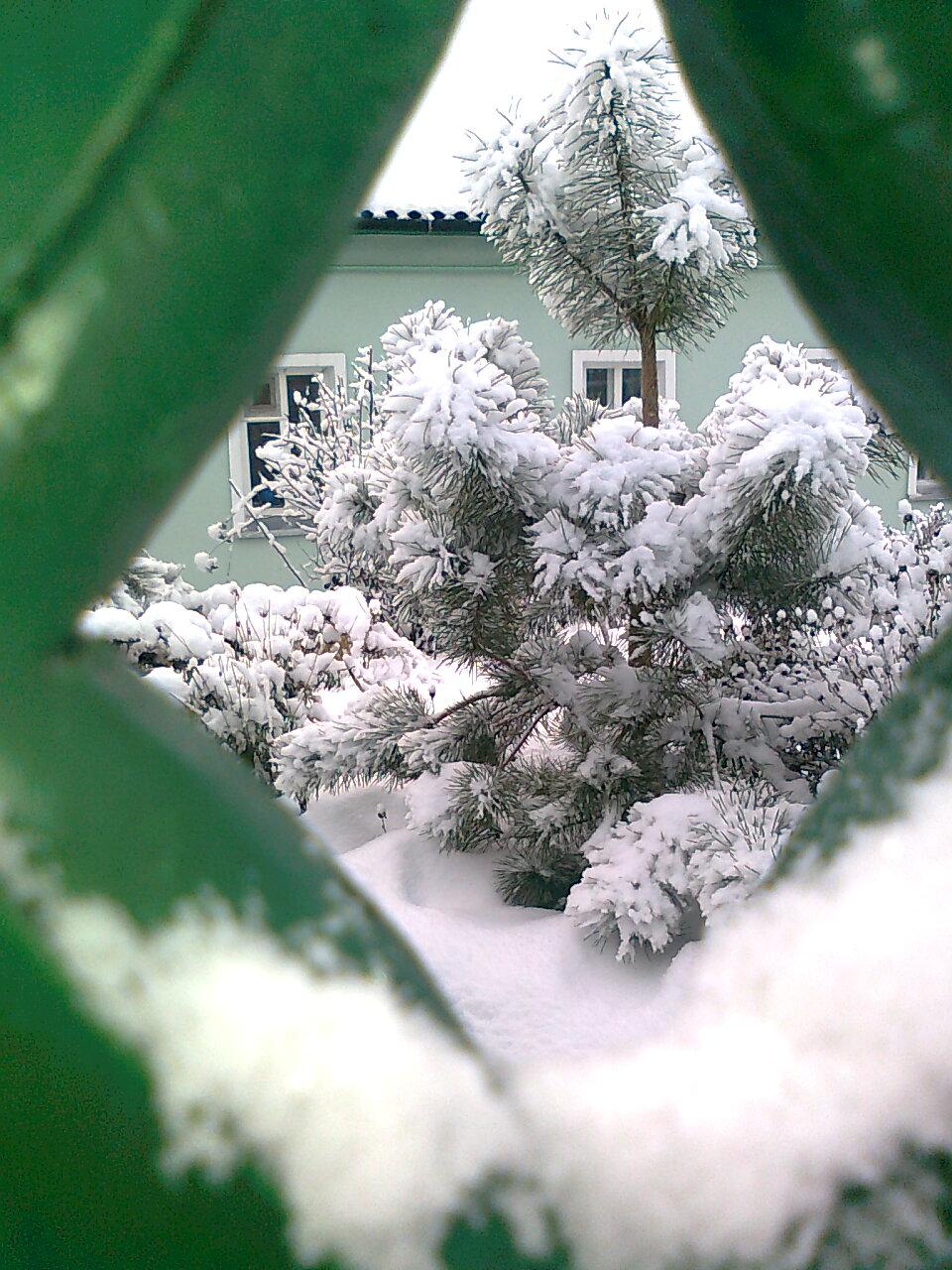 Зима в Корневом