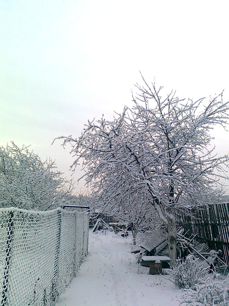 Зимний сад.http://blagomin.ru/