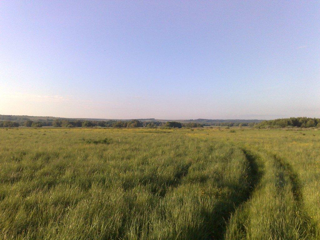 Дорога от деревни Свинушки к реке Верде