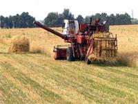 Подведены предварительные итоги работы агропромышленного комплекса Рязанской области