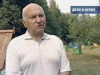 Высший совет партии «Единая Россия» будет обсуждать «Дело в кепке»